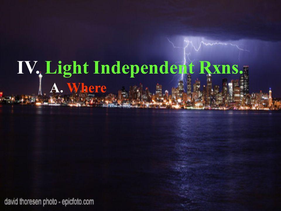 IV. Light Independent Rxns. A. Where