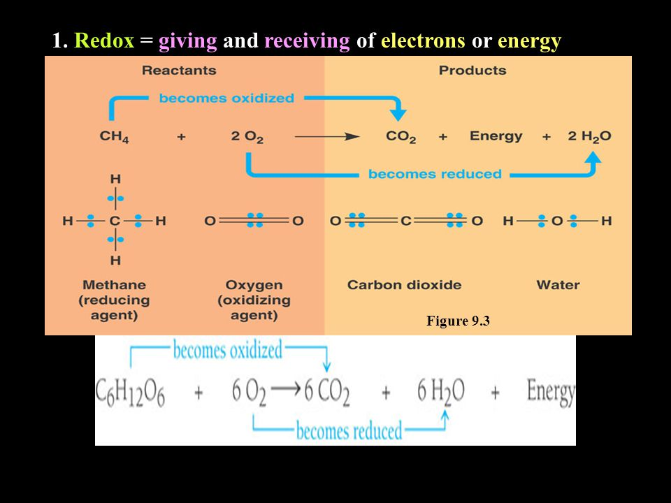 1. Redox = giving and receiving of electrons or energy Figure 9.3