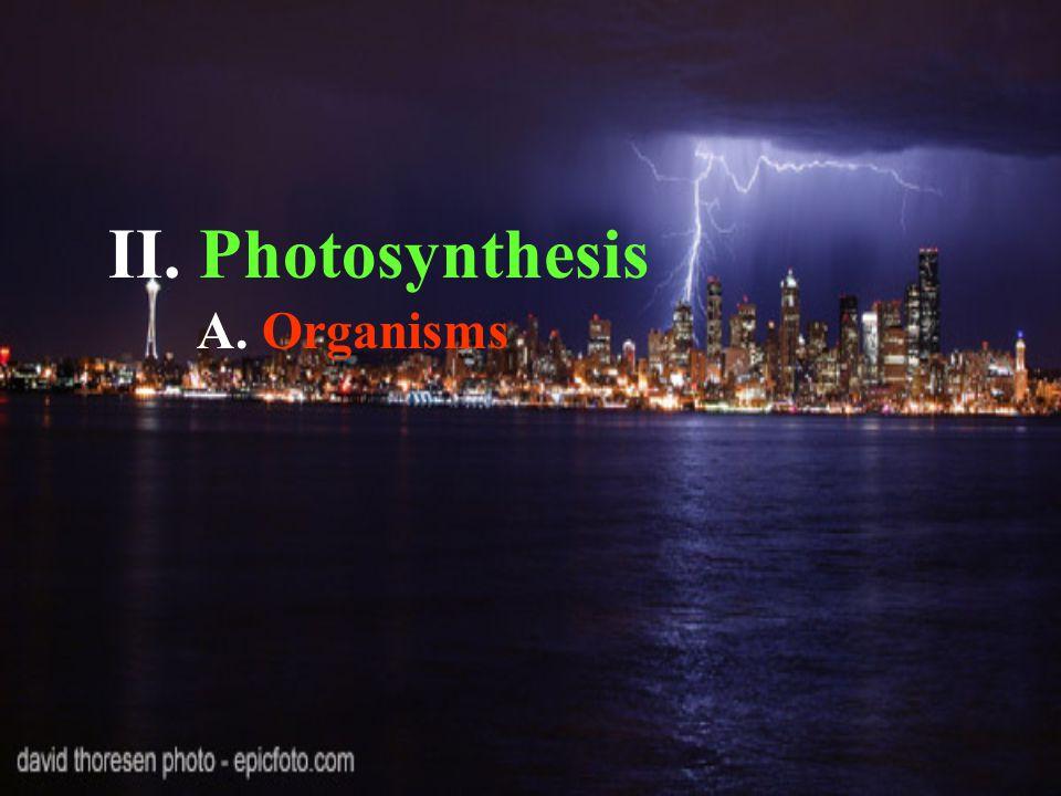 II. Photosynthesis A. Organisms