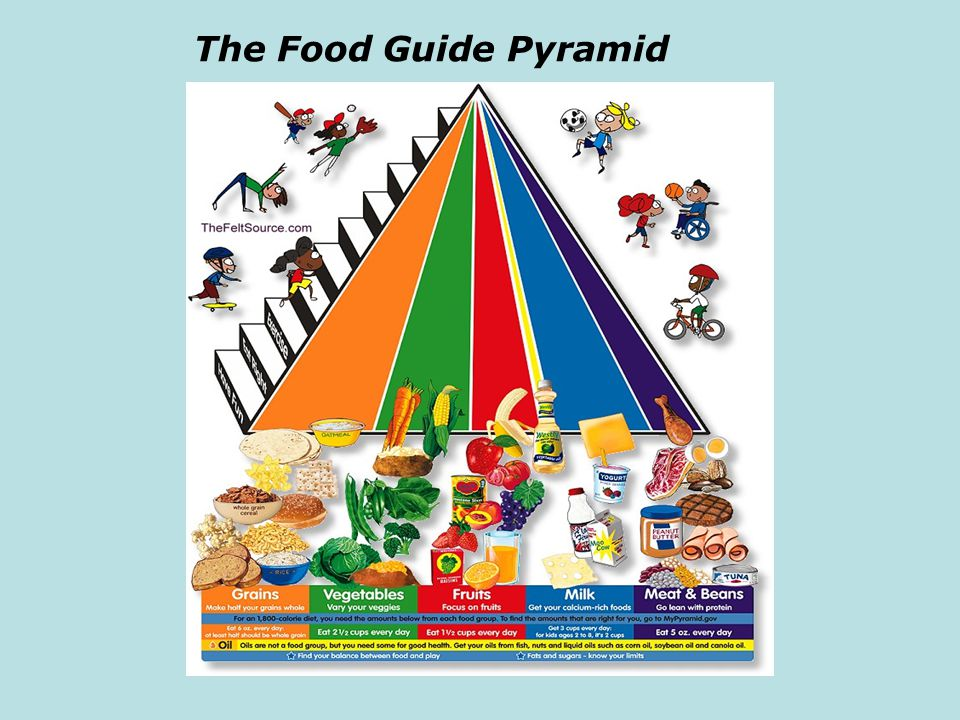 Using the Pyramid to Meet Your Needs The Pyramid shows the suggested amount of daily servings from each of the five major food groups.