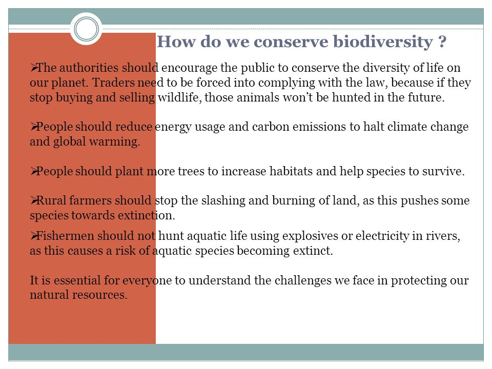 W HAT THREATENS BIODIVERSITY . The loss of biodiversity in an ecosystem upsets its stability.