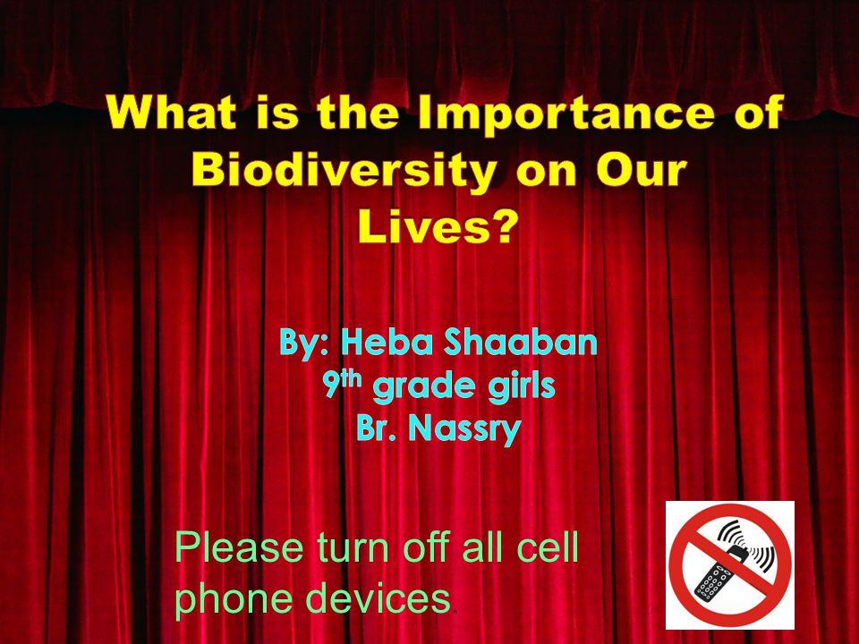 HEBASHAABAN STUDIOS HEBASHAABAN STUDIOS PROUDLY PRESENTS A VERY GOOD PRODUCTION