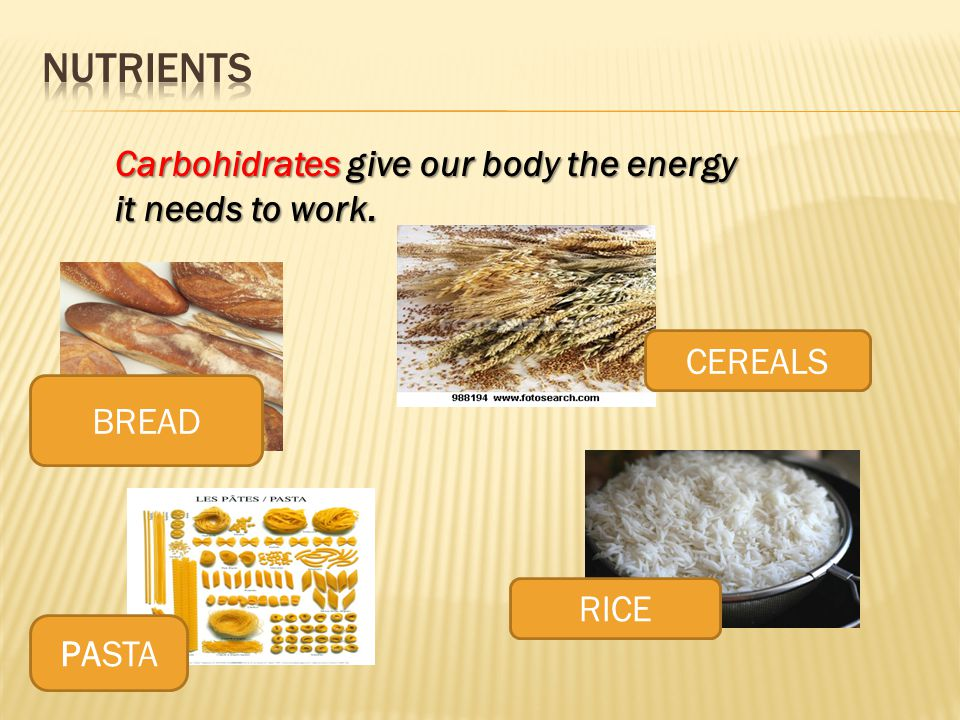 BREAD RICE PASTA Carbohidrates give our body the energy it needs to work. CEREALS