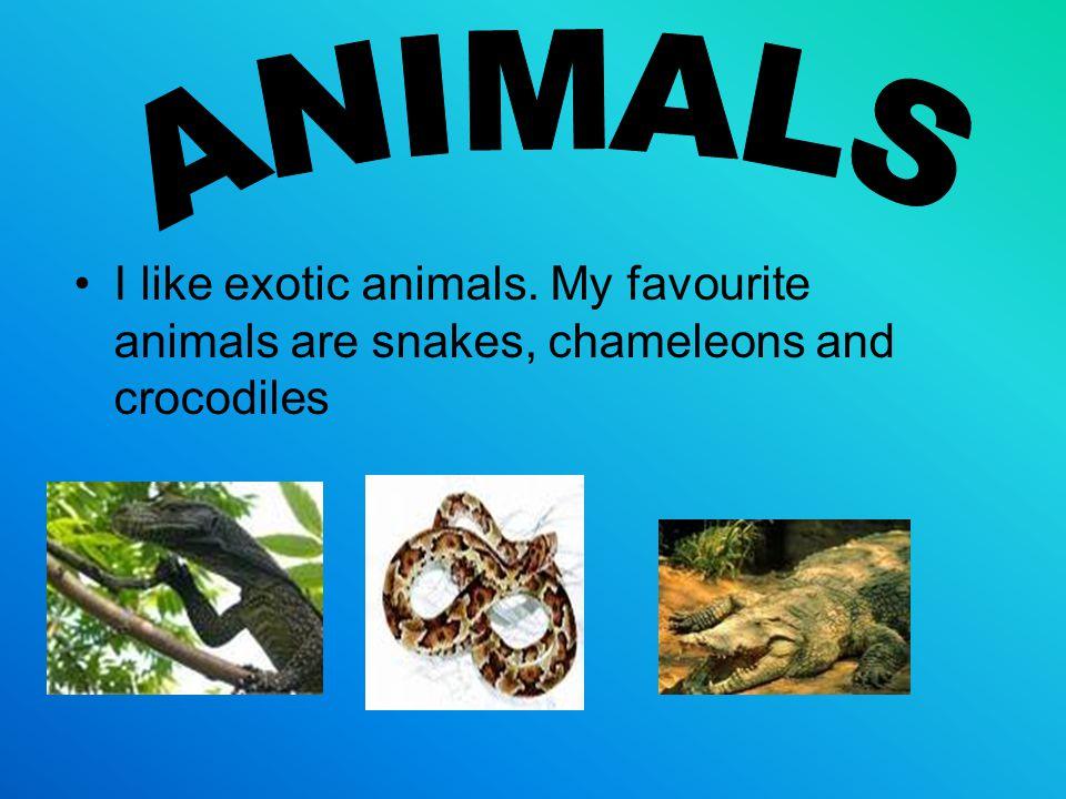 I like exotic animals. My favourite animals are snakes, chameleons and crocodiles