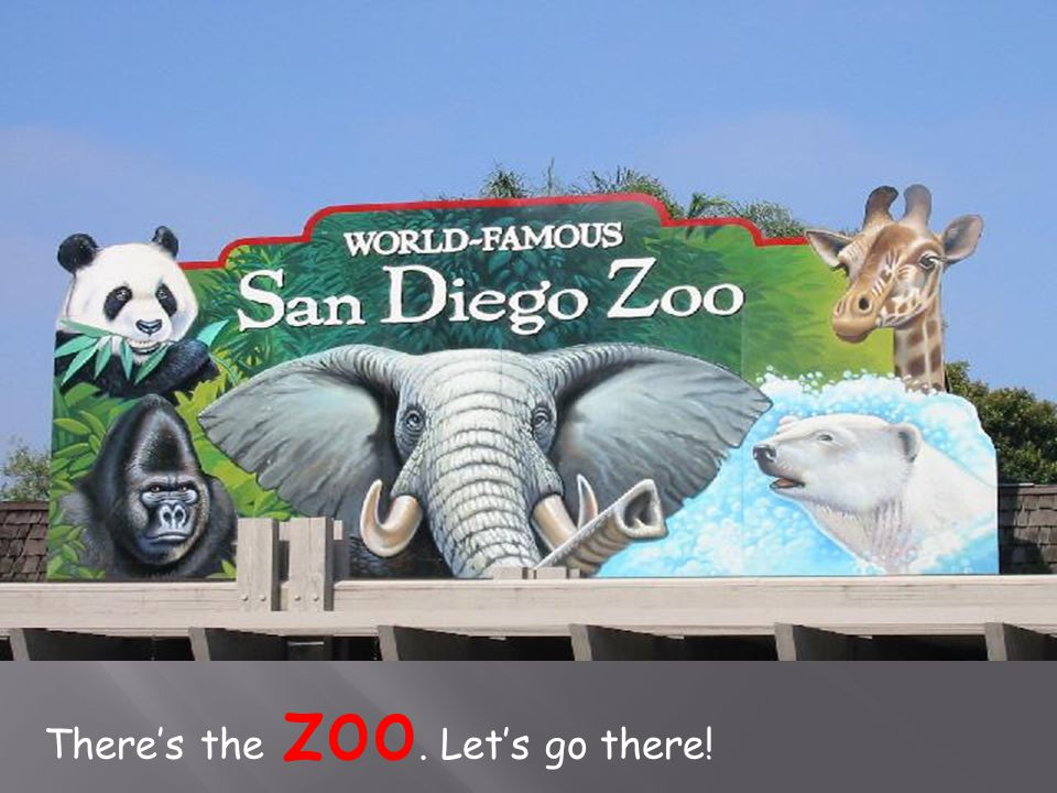 There's the zoo. Let's go there!