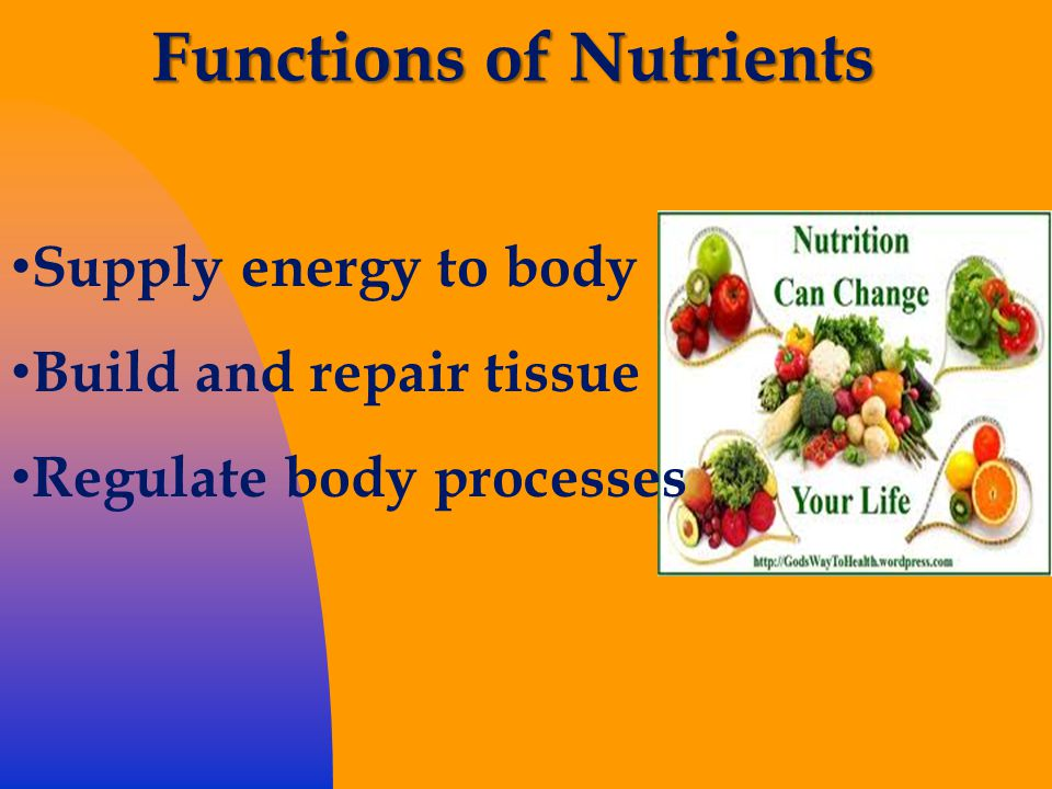 Functions of Nutrients Supply energy to body Build and repair tissue Regulate body processes