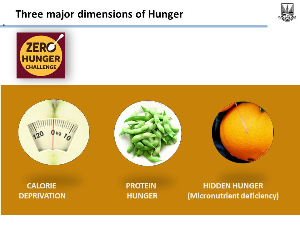 "Three major dimensions of Hunger "" CALORIE DEPRIVATION PROTEIN HUNGER HIDDEN HUNGER (Micronutrient deficiency)"