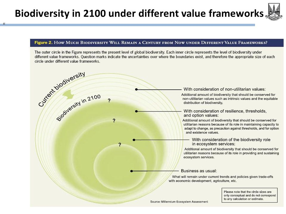 Biodiversity in 2100 under different value frameworks