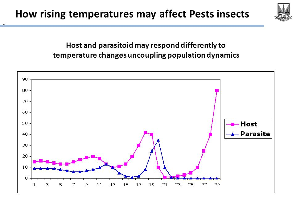 How rising temperatures may affect Pests insects Host and parasitoid may respond differently to temperature changes uncoupling population dynamics