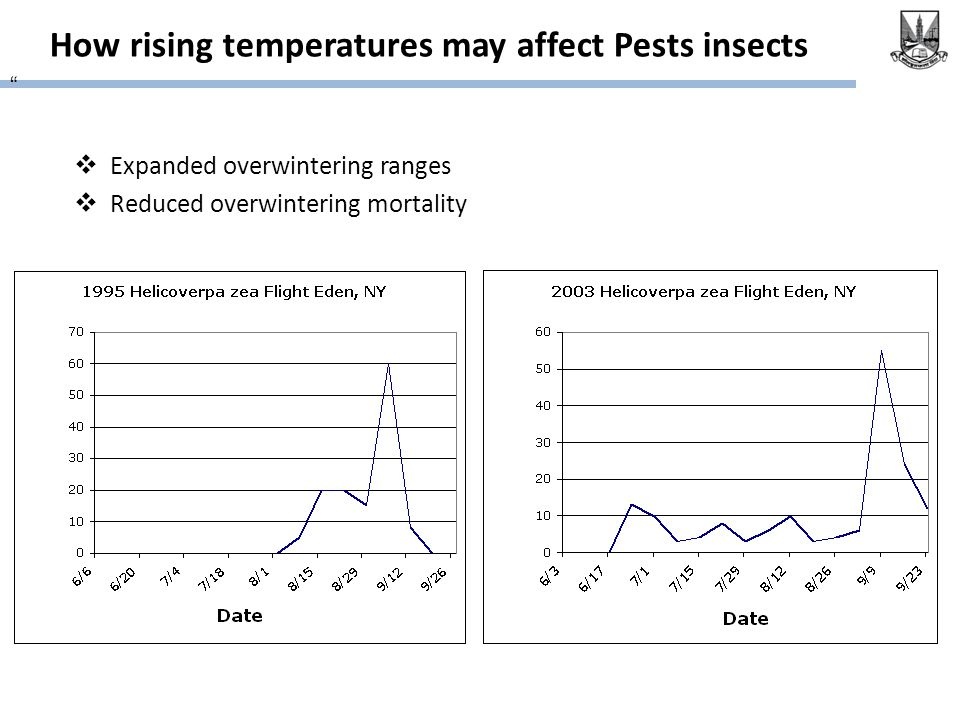 How rising temperatures may affect Pests insects  Expanded overwintering ranges  Reduced overwintering mortality