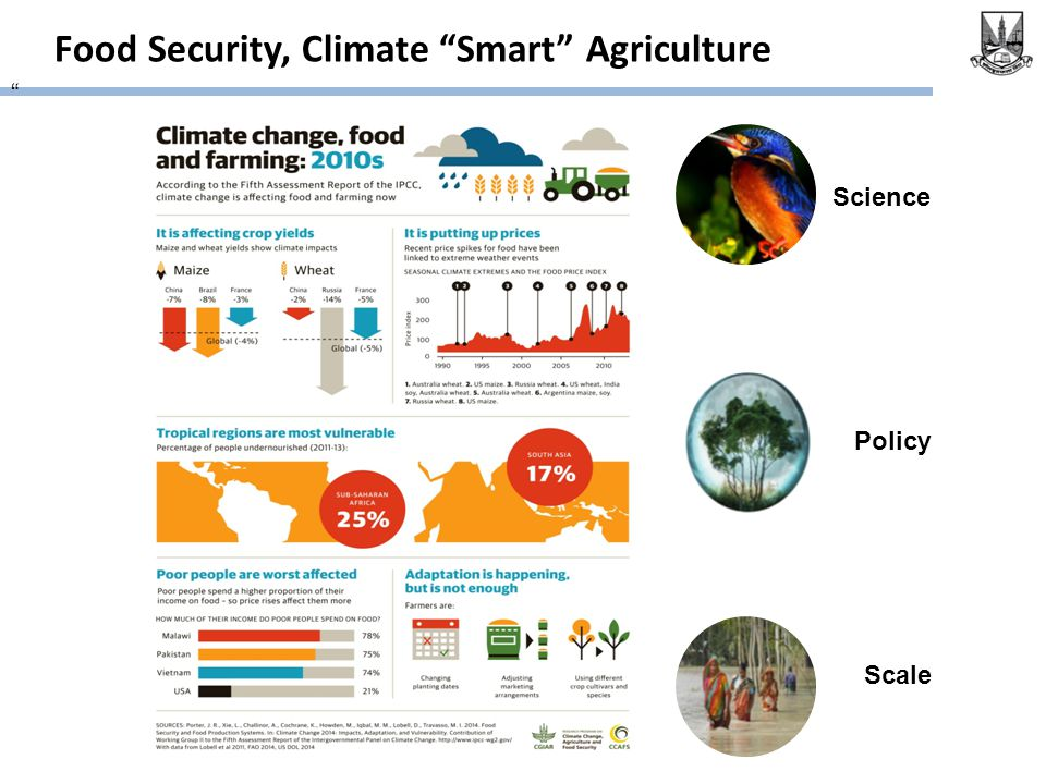 Food Security, Climate Smart Agriculture Science Policy Scale