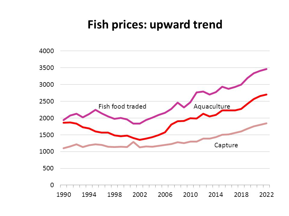 Fish prices: upward trend Traded products USD/tonne