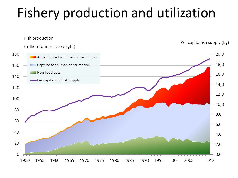 Fishery production and utilization Fish production (million tonnes live weight) Per capita fish supply (kg)