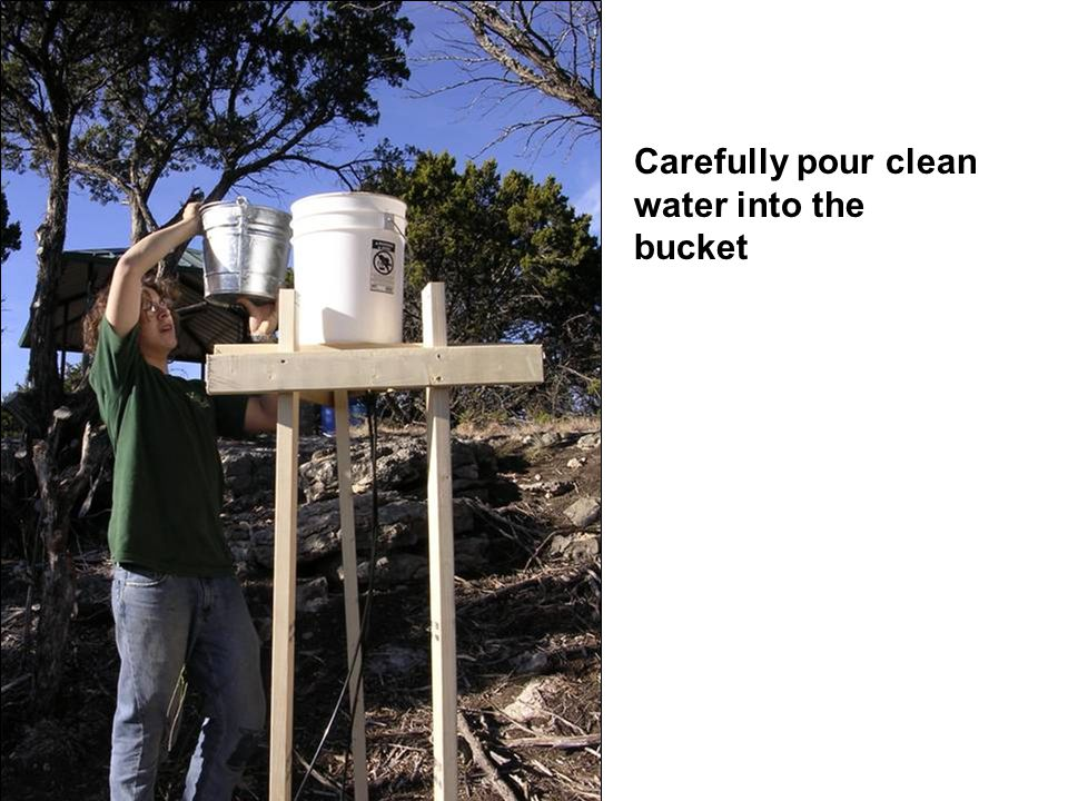 Carefully pour clean water into the bucket
