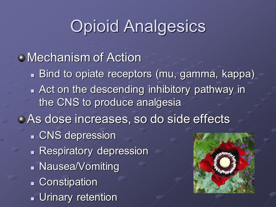 Opioid Analgesics Mechanism of Action Bind to opiate receptors (mu, gamma, kappa) Bind to opiate receptors (mu, gamma, kappa) Act on the descending inhibitory pathway in the CNS to produce analgesia Act on the descending inhibitory pathway in the CNS to produce analgesia As dose increases, so do side effects CNS depression CNS depression Respiratory depression Respiratory depression Nausea/Vomiting Nausea/Vomiting Constipation Constipation Urinary retention Urinary retention
