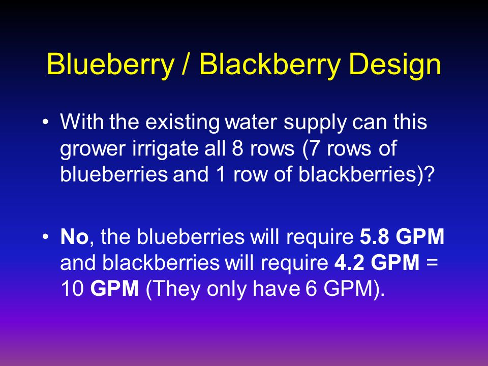 Blueberry / Blackberry Design With the existing water supply can this grower irrigate all 8 rows (7 rows of blueberries and 1 row of blackberries).