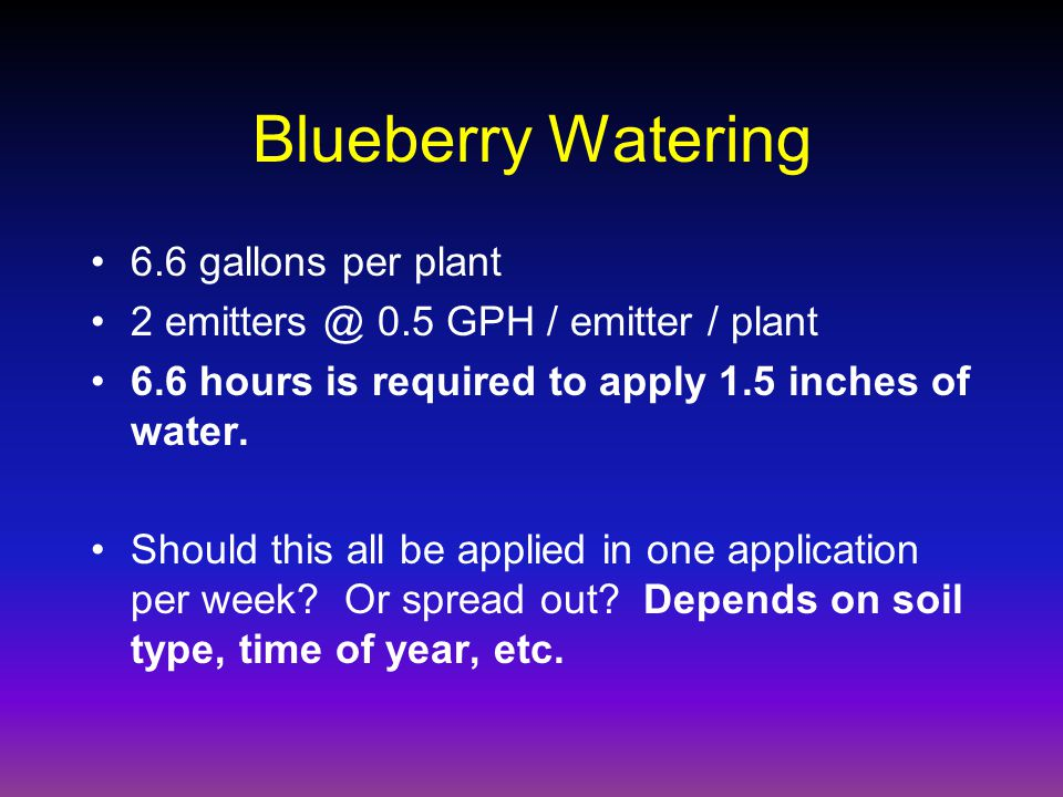 Blueberry Watering 6.6 gallons per plant 2 emitters @ 0.5 GPH / emitter / plant 6.6 hours is required to apply 1.5 inches of water.