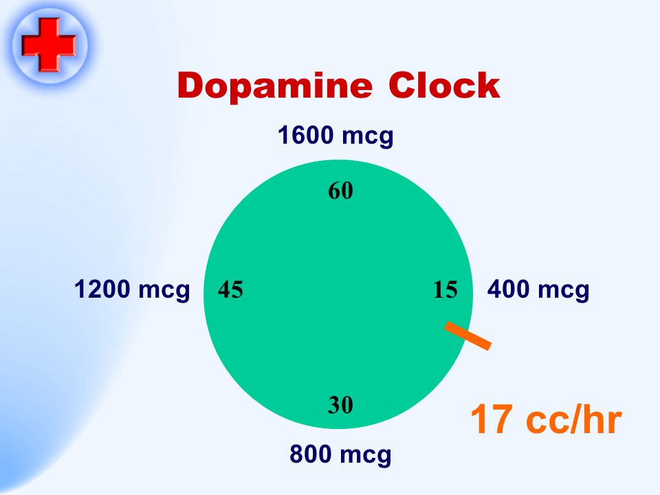 Dopamine Clock 60 15 30 45 1600 mcg 800 mcg 1200 mcg400 mcg 17 cc/hr