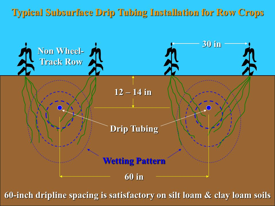 30 in 60 in Typical Subsurface Drip Tubing Installation for Row Crops 12 – 14 in Non Wheel- Track Row Wetting Pattern Drip Tubing 60-inch dripline spacing is satisfactory on silt loam & clay loam soils
