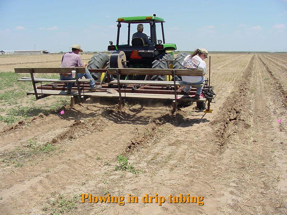Plowing in drip tubing