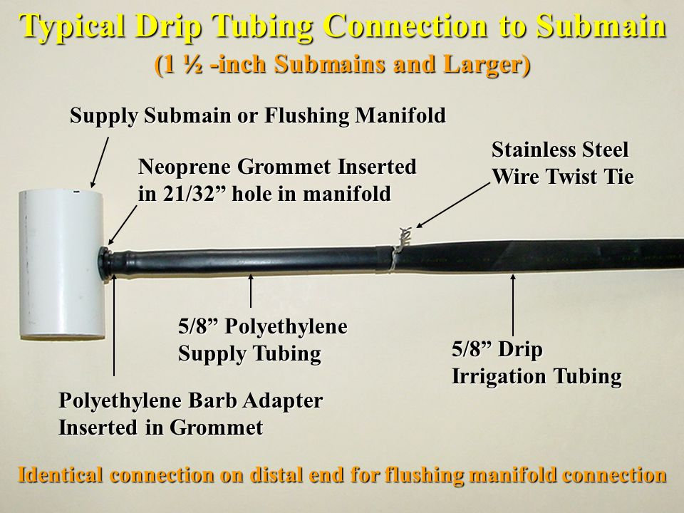 Typical Drip Tubing Connection to Submain (1 ½ -inch Submains and Larger) Supply Submain or Flushing Manifold Neoprene Grommet Inserted in 21/32 hole in manifold Polyethylene Barb Adapter Inserted in Grommet 5/8 Polyethylene Supply Tubing 5/8 Drip Irrigation Tubing Stainless Steel Wire Twist Tie Identical connection on distal end for flushing manifold connection