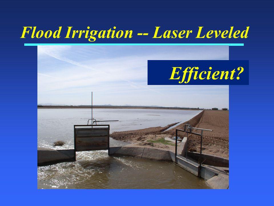 Flood Irrigation -- Laser Leveled Efficient?