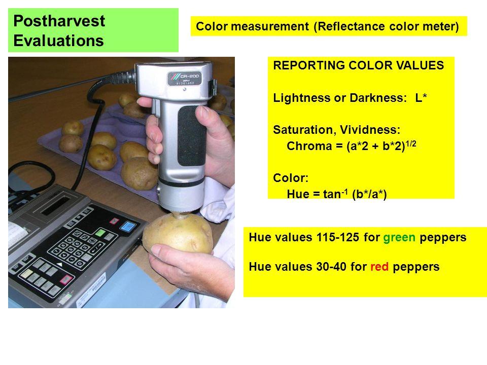 Color measurement (Reflectance color meter) REPORTING COLOR VALUES Lightness or Darkness: L* Saturation, Vividness: Chroma = (a*2 + b*2) 1/2 Color: Hue = tan -1 (b*/a*) Hue values 115-125 for green peppers Hue values 30-40 for red peppers Postharvest Evaluations