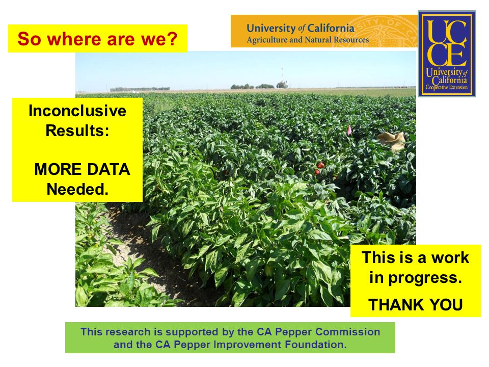 This research is supported by the CA Pepper Commission and the CA Pepper Improvement Foundation.