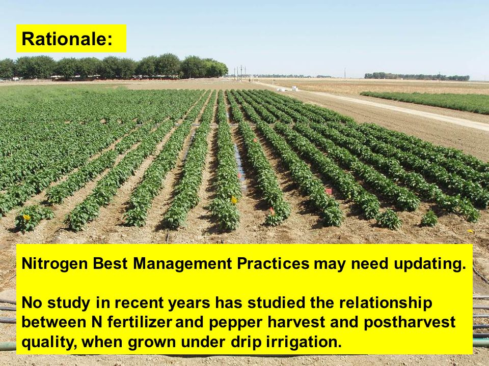 Rationale: Nitrogen Best Management Practices may need updating.