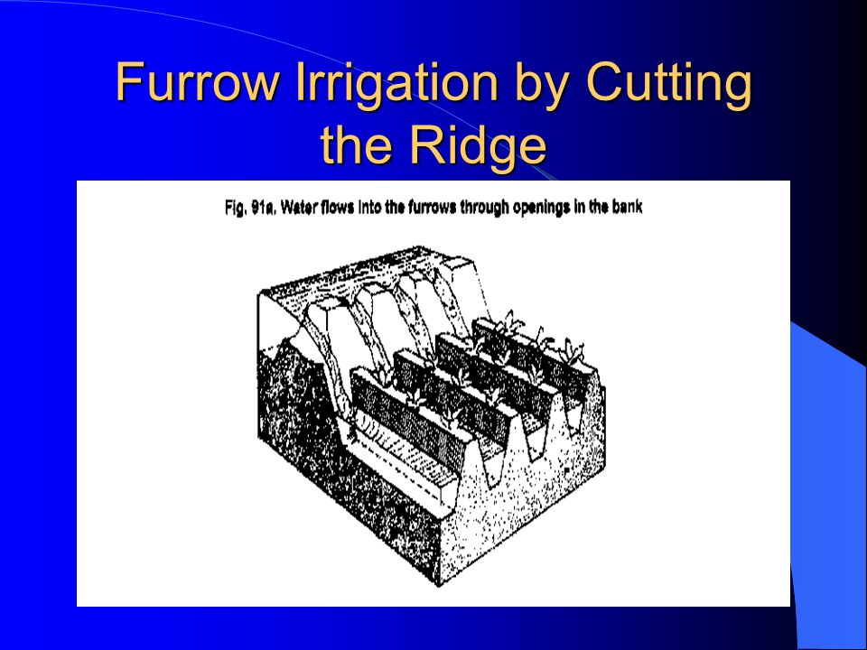 Furrow Irrigation Contd. There are different ways of applying water to the furrow. As shown in Fig. 3.1, siphons are used to divert water from the hea