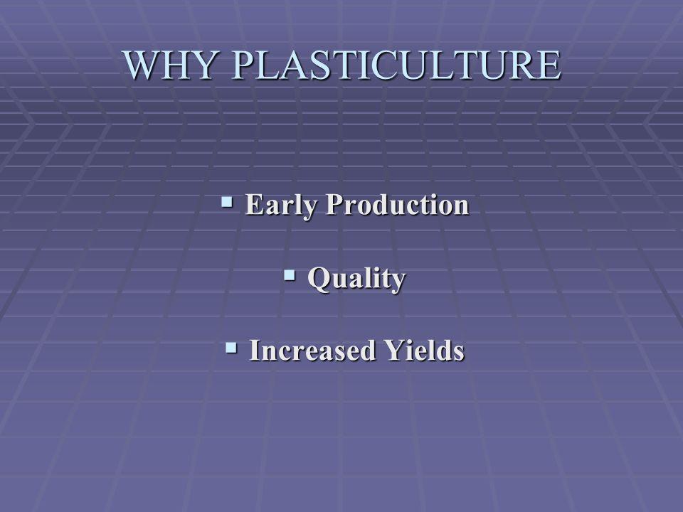 Plastic Mulch-laying Equipment