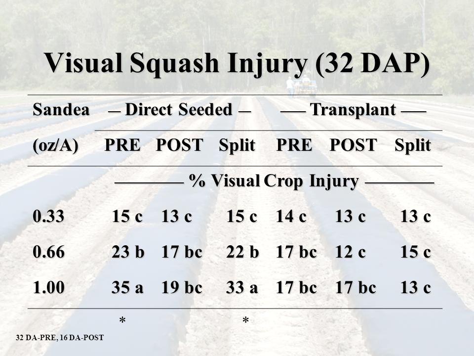 Visual Squash Injury (32 DAP) Sandea __ Direct Seeded __ ____ Transplant ____ (oz/A)PREPOSTSplitPREPOSTSplit ___________ % Visual Crop Injury ___________ 0.33 15 c 13 c 15 c 14 c 13 c 0.66 23 b 17 bc 22 b 17 bc 12 c 15 c 1.00 35 a 19 bc 33 a 17 bc 13 c 32 DA-PRE, 16 DA-POST **