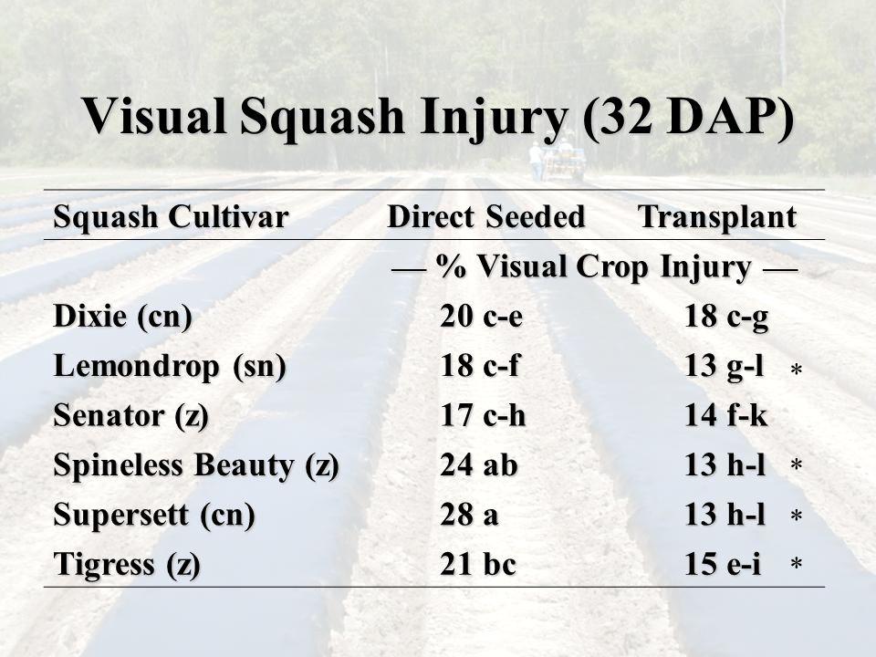 Visual Squash Injury (32 DAP) Squash Cultivar Direct Seeded Transplant ___ % Visual Crop Injury ___ Dixie (cn) 20 c-e 18 c-g Lemondrop (sn) 18 c-f 13 g-l Senator (z) 17 c-h 14 f-k Spineless Beauty (z) 24 ab 13 h-l Supersett (cn) 28 a 13 h-l Tigress (z) 21 bc 15 e-i * * * *
