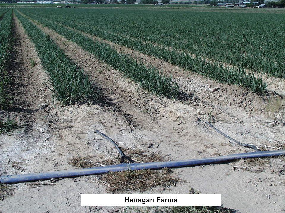 Hanagan Farms