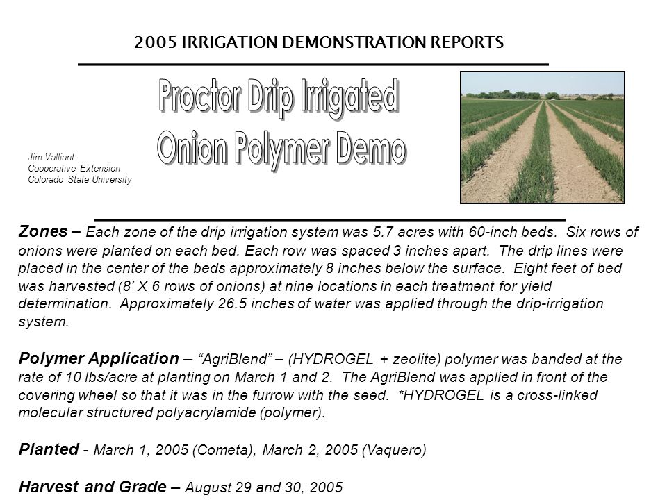 2005 IRRIGATION DEMONSTRATION REPORTS Jim Valliant Cooperative Extension Colorado State University Zones – Each zone of the drip irrigation system was 5.7 acres with 60-inch beds.
