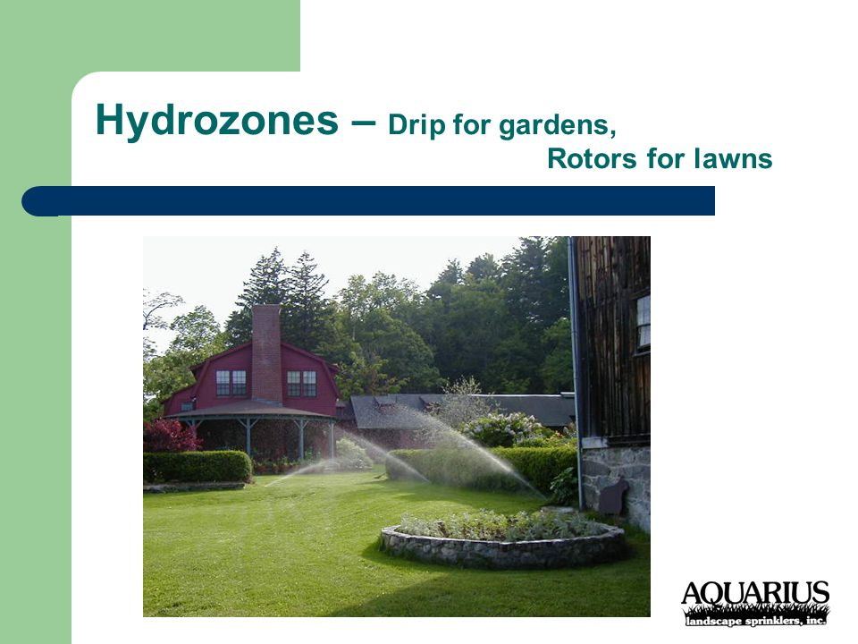 Hydrozones – Drip for gardens, Rotors for lawns