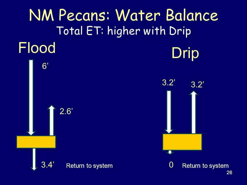 NM Pecans: Water Balance Total ET: higher with Drip 26 Drip 6' 2.6' 3.4' Flood 3.2' 0 Return to system