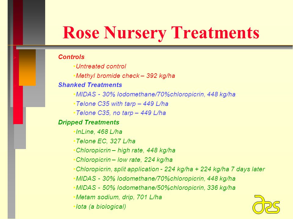 Rose Nursery Treatments   Controls Untreated control Methyl bromide check – 392 kg/ha   Shanked Treatments MIDAS - 30% Iodomethane/70%chloropicrin, 448 kg/ha Telone C35 with tarp – 449 L/ha Telone C35, no tarp – 449 L/ha   Dripped Treatments InLine, 468 L/ha Telone EC, 327 L/ha Chloropicrin – high rate, 448 kg/ha Chloropicrin – low rate, 224 kg/ha Chloropicrin, split application - 224 kg/ha + 224 kg/ha 7 days later MIDAS - 30% Iodomethane/70%chloropicrin, 448 kg/ha MIDAS - 50% Iodomethane/50%chloropicrin, 336 kg/ha Metam sodium, drip, 701 L/ha Iota (a biological)