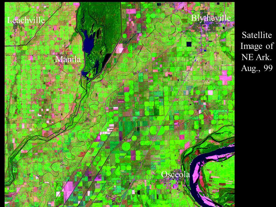 Osceola Blytheville Manila Leachville Satellite Image of NE Ark. Aug., 99