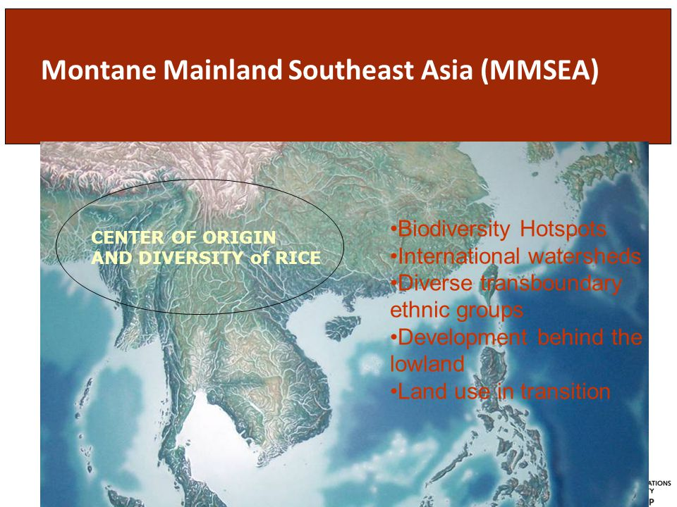 Montane Mainland Southeast Asia (MMSEA) CENTER OF ORIGIN AND DIVERSITY of RICE Biodiversity Hotspots International watersheds Diverse transboundary ethnic groups Development behind the lowland Land use in transition