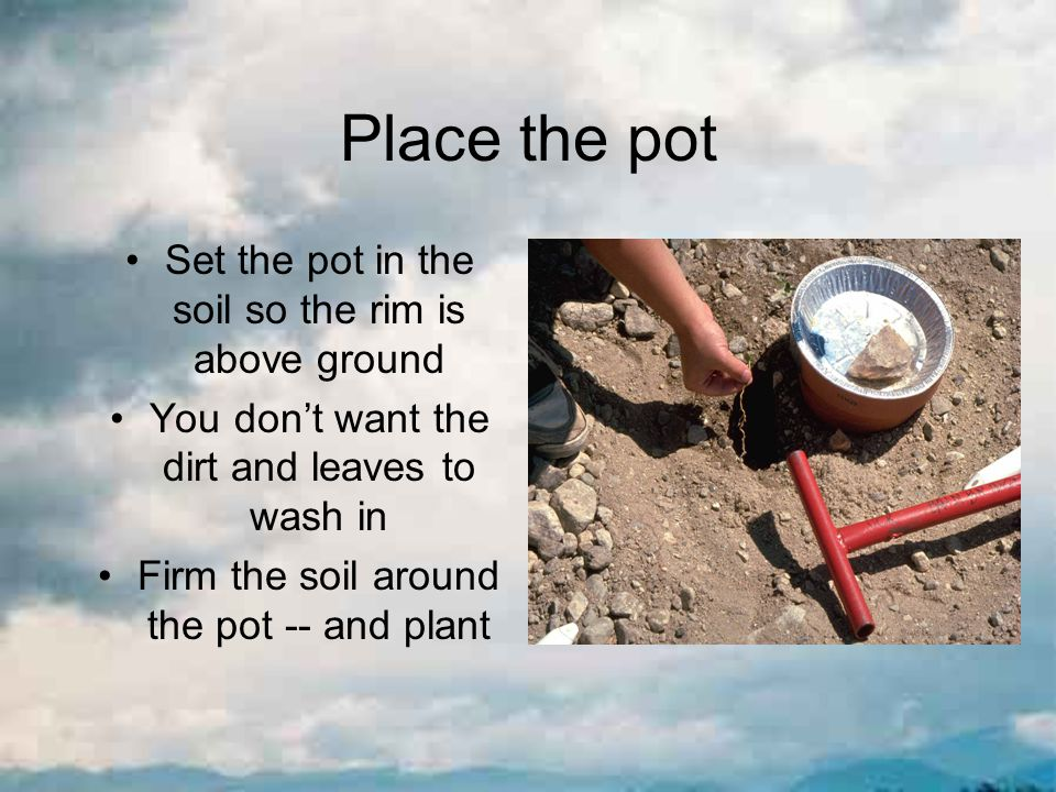 Place the pot Set the pot in the soil so the rim is above ground You don't want the dirt and leaves to wash in Firm the soil around the pot -- and plant