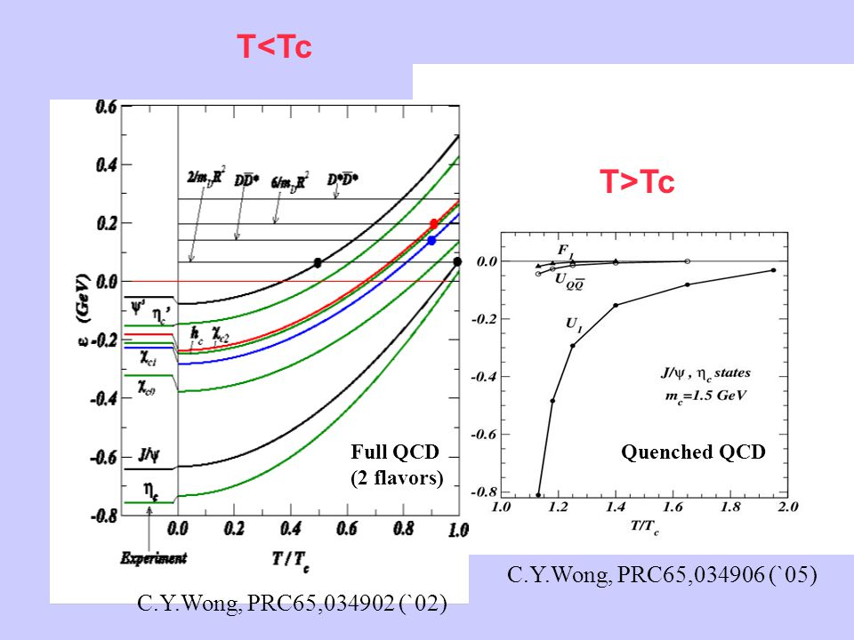 (1) T<Tc T>Tc C.Y.Wong, PRC65,034902 (`02) C.Y.Wong, PRC65,034906 (`05) Quenched QCDFull QCD (2 flavors)