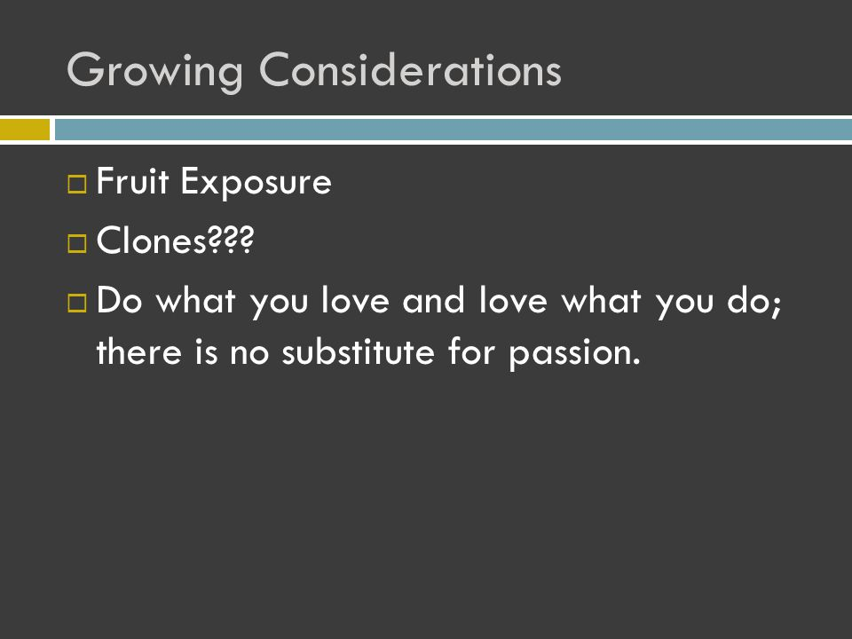 Growing Considerations  Fruit Exposure  Clones??.