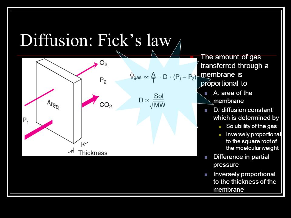 Diffusion: Fick's law The amount of gas transferred through a membrane is proportional to A: area of the membrane D: diffusion constant which is deter