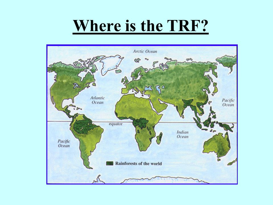 Where is the TRF