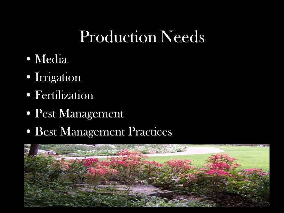 Production Needs Media Irrigation Fertilization Pest Management Best Management Practices