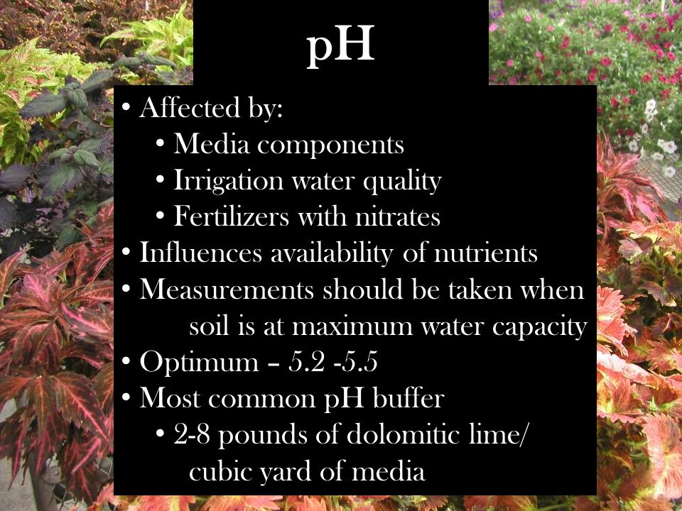pH Affected by: Media components Irrigation water quality Fertilizers with nitrates Influences availability of nutrients Measurements should be taken