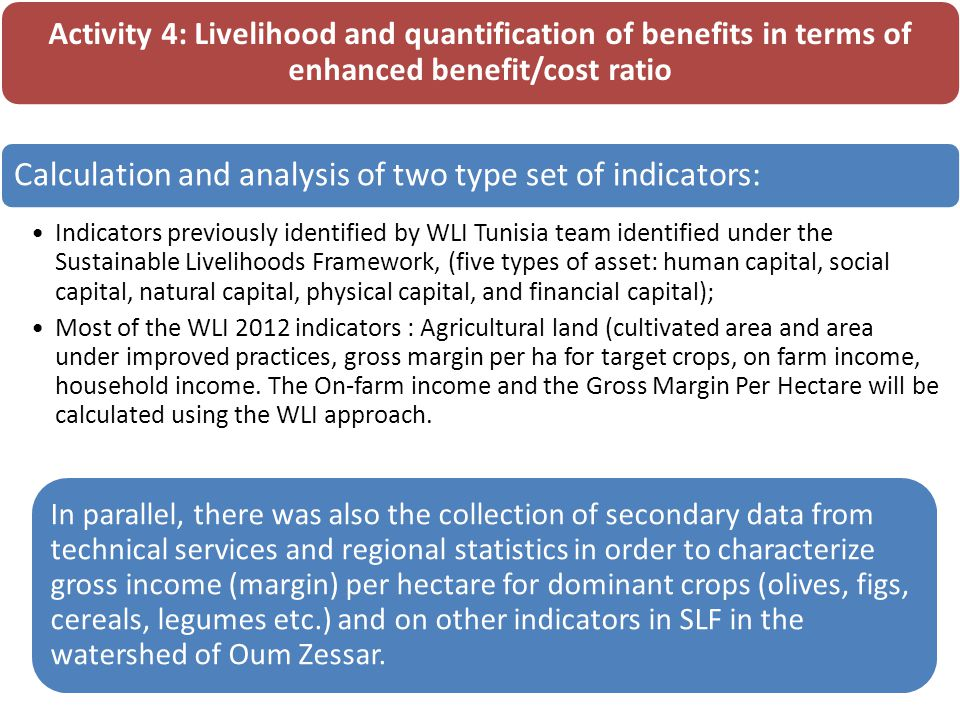 Activity 4: Livelihood and quantification of benefits in terms of enhanced benefit/cost ratio Calculation and analysis of two type set of indicators: Indicators previously identified by WLI Tunisia team identified under the Sustainable Livelihoods Framework, (five types of asset: human capital, social capital, natural capital, physical capital, and financial capital); Most of the WLI 2012 indicators : Agricultural land (cultivated area and area under improved practices, gross margin per ha for target crops, on farm income, household income.