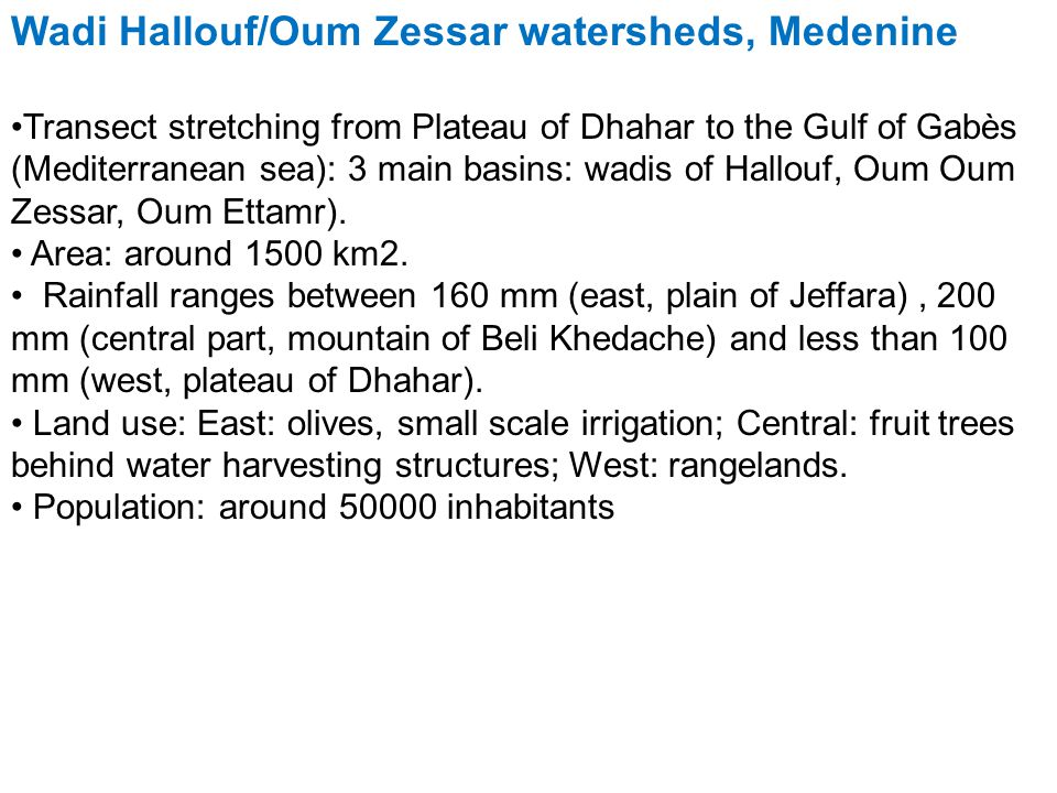 Wadi Hallouf/Oum Zessar watersheds, Medenine Transect stretching from Plateau of Dhahar to the Gulf of Gabès (Mediterranean sea): 3 main basins: wadis of Hallouf, Oum Oum Zessar, Oum Ettamr).