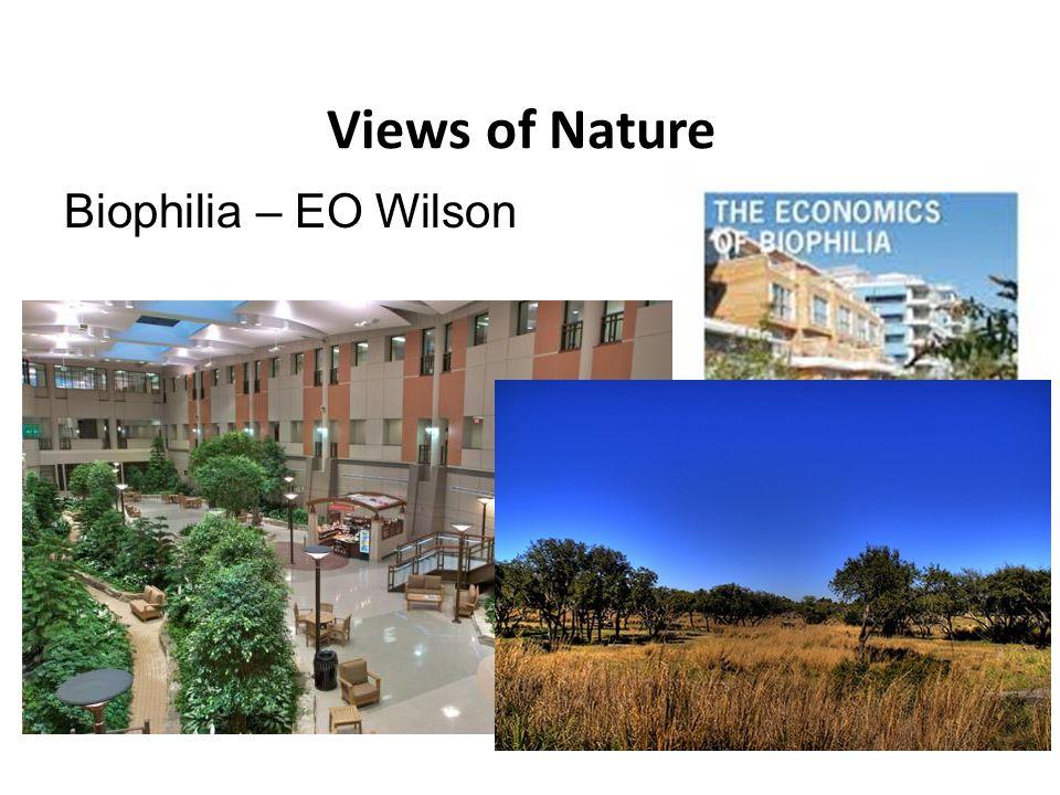 Views of Nature Biophilia – EO Wilson